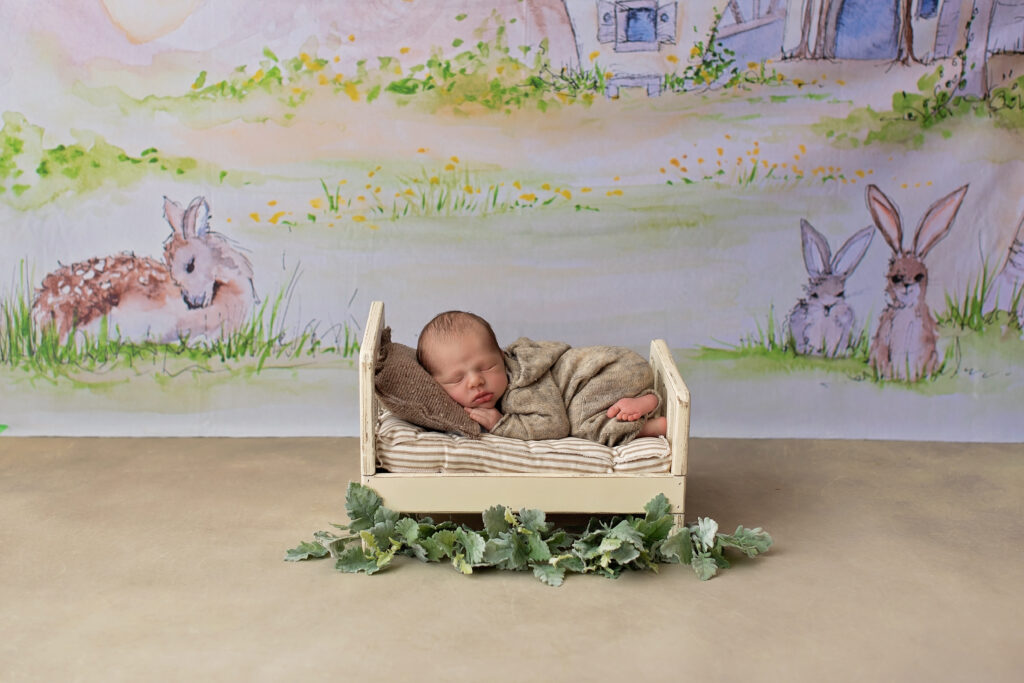 rockville newborn photographer